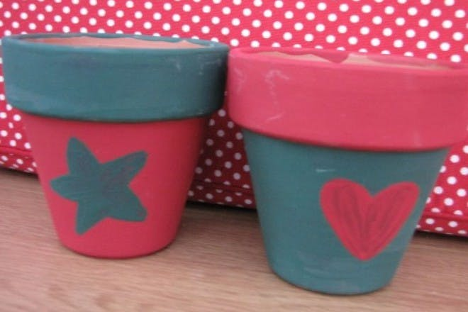 pink and blue pots for plants