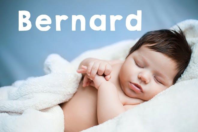 Baby name Bernard