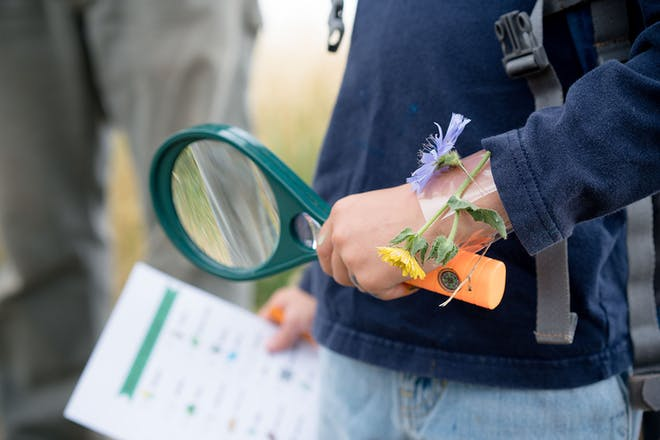 Child holding magnifying glass and scavenger hunt list with flowers on wrist