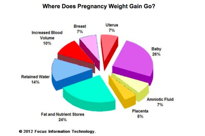 A pie chart illustrating what pregnancy weight is comprised of