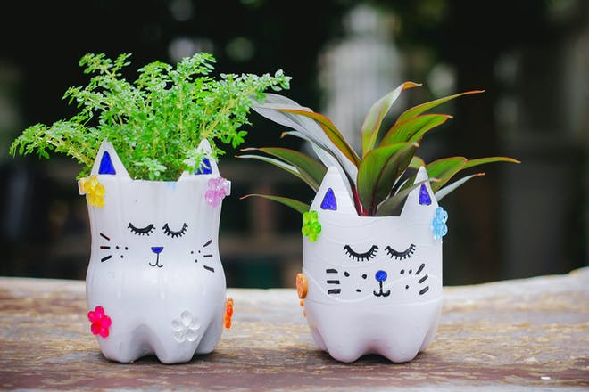 Kids craft project – kitten plant pots made using recycled plastic bottles painted white and covered in stick on jewels. Plants inside
