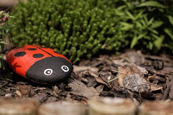 Ladybird painted stone