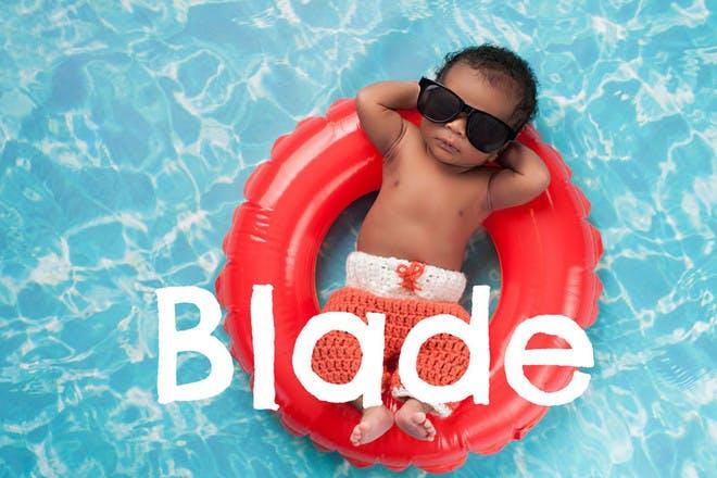 5. Blade