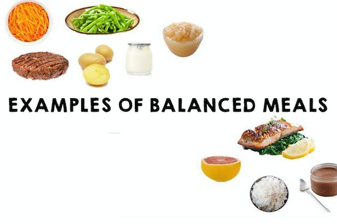 Example balanced meals