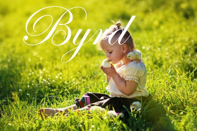 1. Byrd