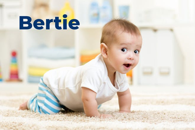 Crawling baby. Name Bertie written in text