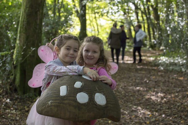 Finding fairies in the Fairy Wood at National Botanic Gardens of Wales