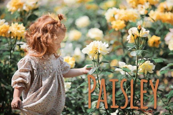 Paisley Scottish name