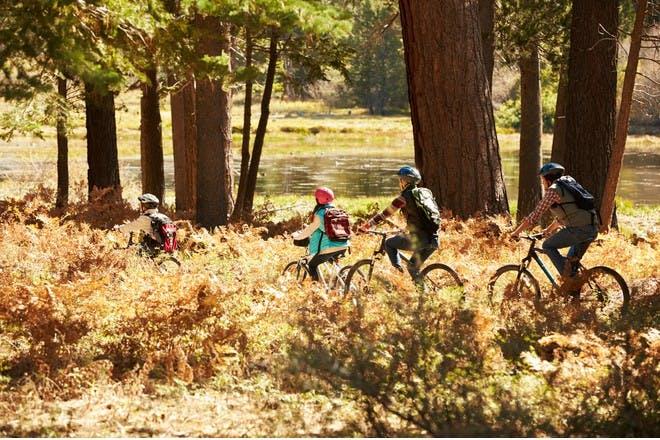 family riding bikes through forest