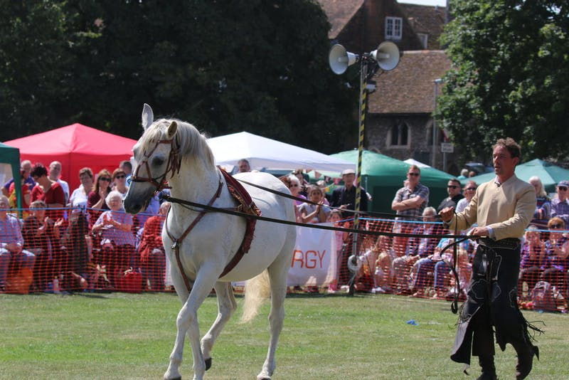 Equestrian act at New Romney Country Fayre