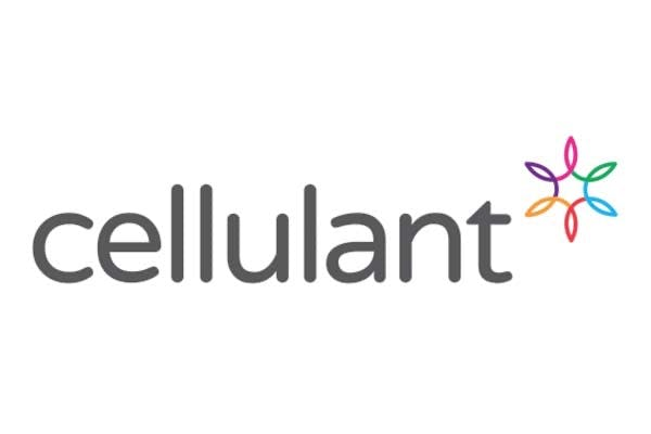 Cellulant Turns to AWS and New Relic to Facilitate Rapid Growth and Peak Performance for its Pan-African Payment Gateway Logo