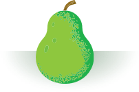 illustration of green pear