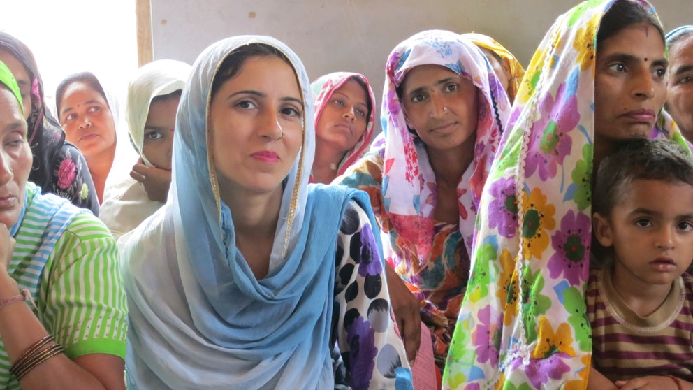 Group meeting portrait, India