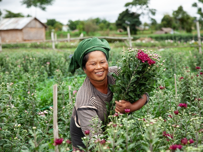 NMI invests in Proximity Finance, Myanmar's first farmer-focused finance institution