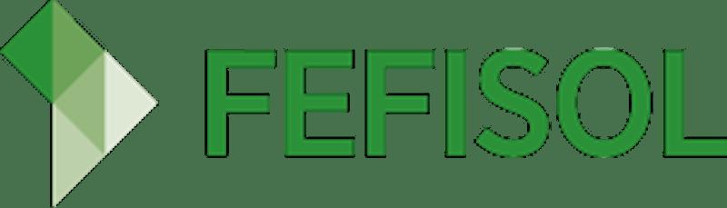 FEFISOL (Fund, MIV)