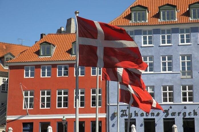The Danish Regulated Market Saw a Decrease in Revenue in 2020