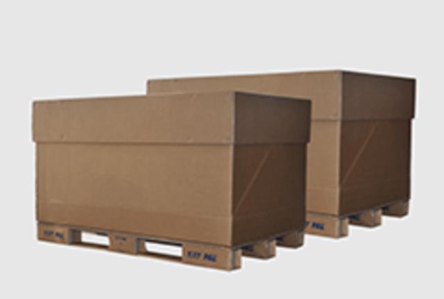 Deux contenants Box EXIGO DEEE de Recygo