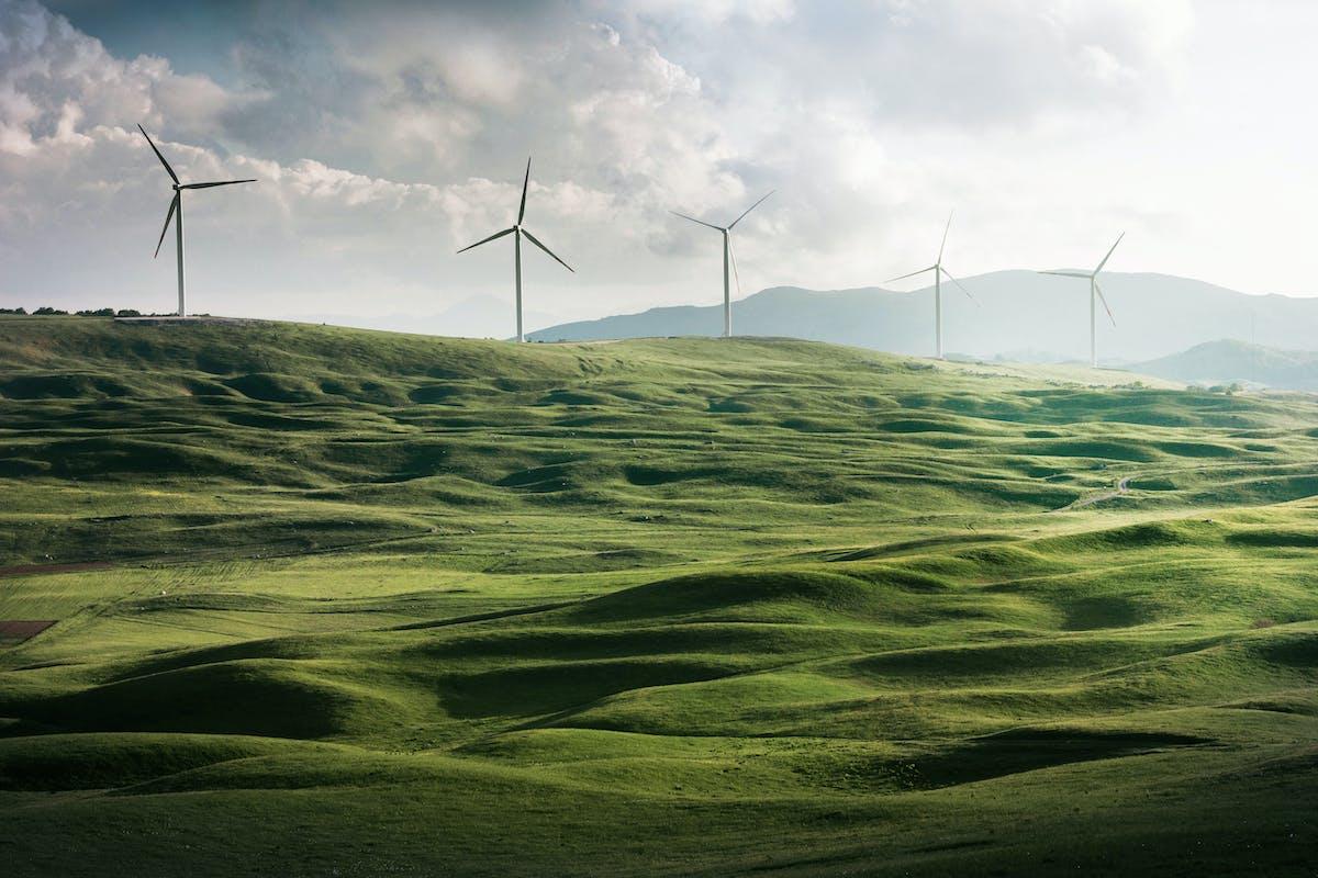 Recygo partenaire Economie d'Energie