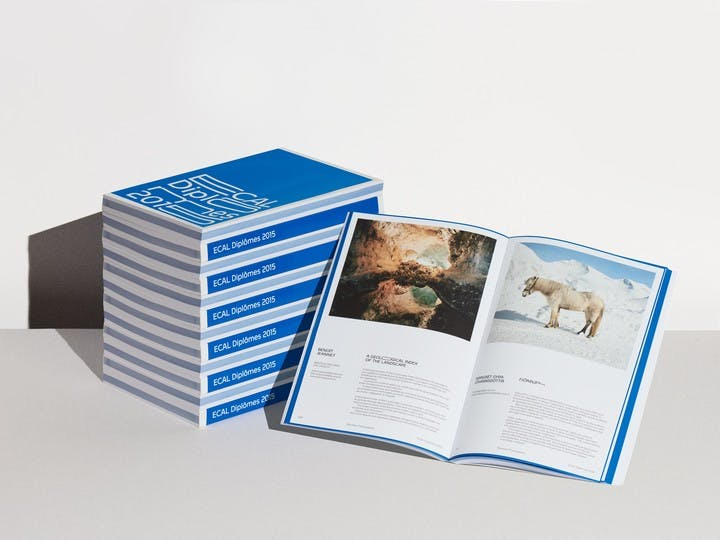 """""""ECAL Diplômes 2015"""" yearbook published by ECAL Editions showcasing the works of all Bachelor and Master graduates of 2015"""