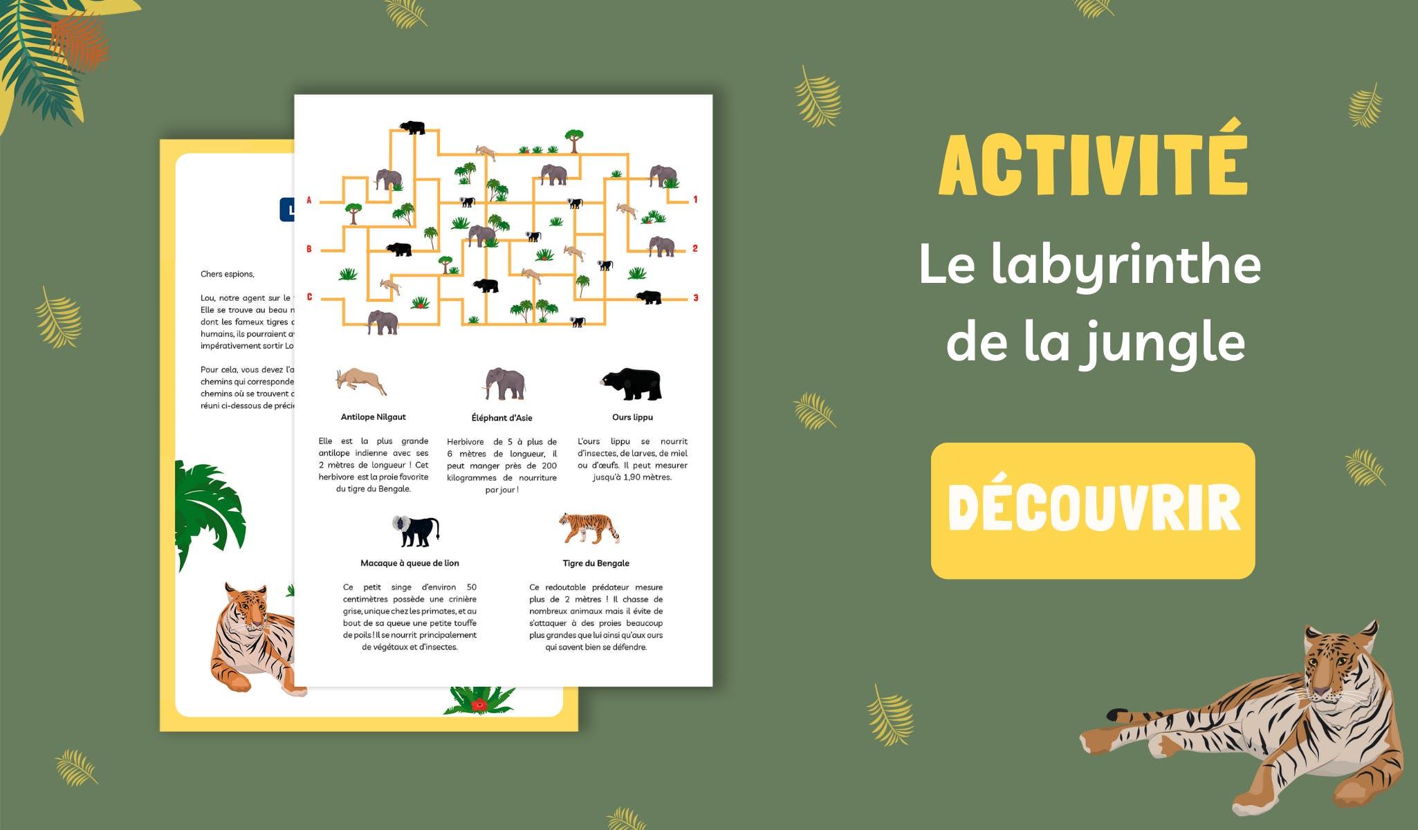 Labyrinthe Mysteriokid à télécharger gratuitement sur le thème de la jungle et des animaux indiens, pour les enfants à partir de 7 ans