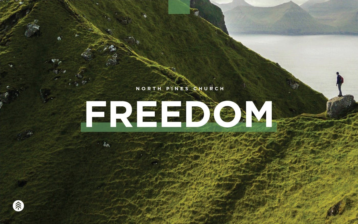 A person overlooking green mountains and lake with Freedom text overlay.