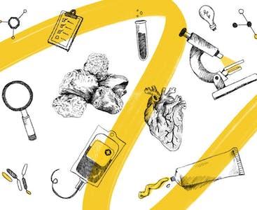 Illustrazione con un nastro giallo e icone che rappresentano la scienza e la ricerca.