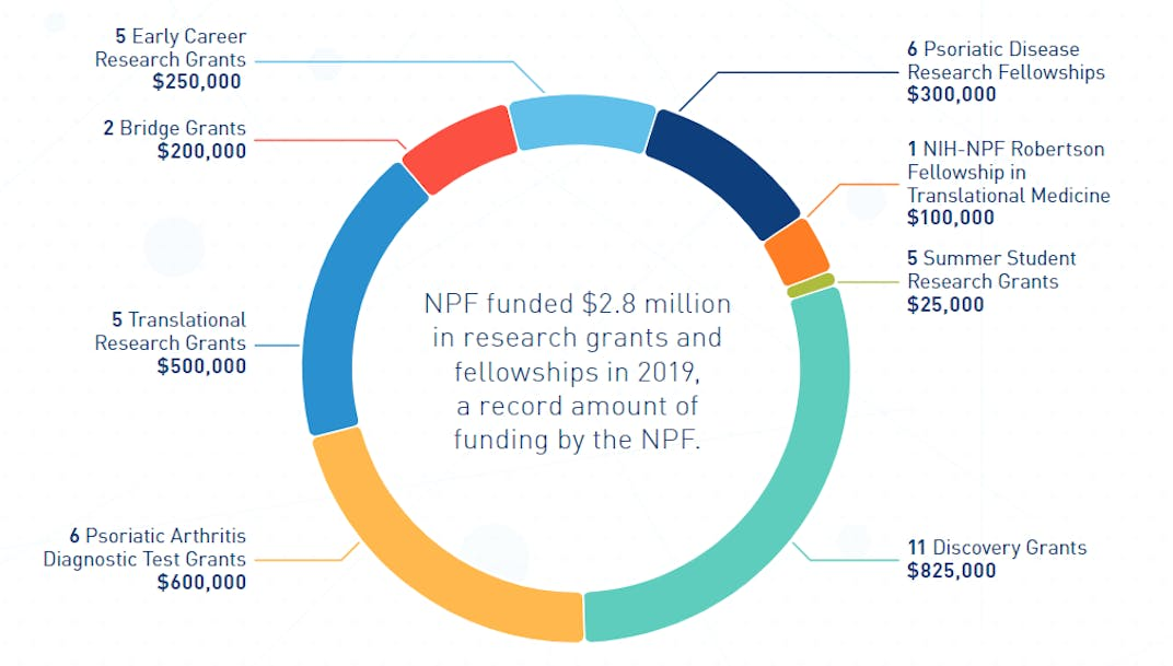 Circle image of breakdown of 2019 funding image from pg 5 of the research portfolio