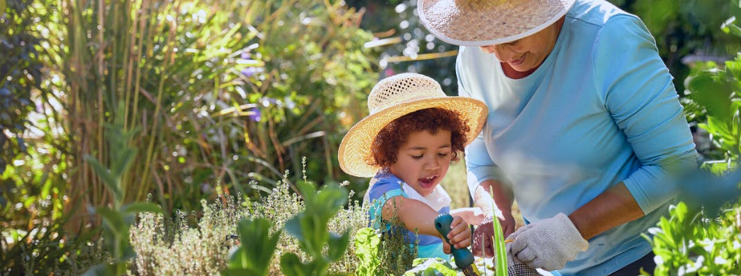 A grandmother and grandchild garden together.