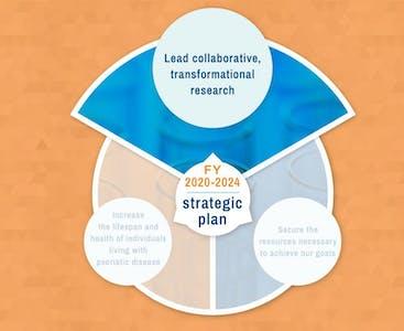 Illustrated 5-year strategic plan logo.