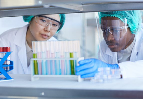 Two researchers looking at vials in a lab