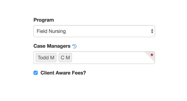 Multiple Case Managers
