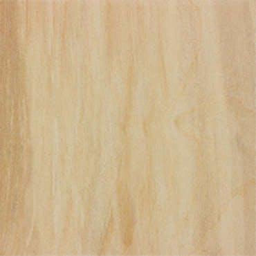 new-white-birch