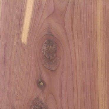 new-aromatic-red-cedar.
