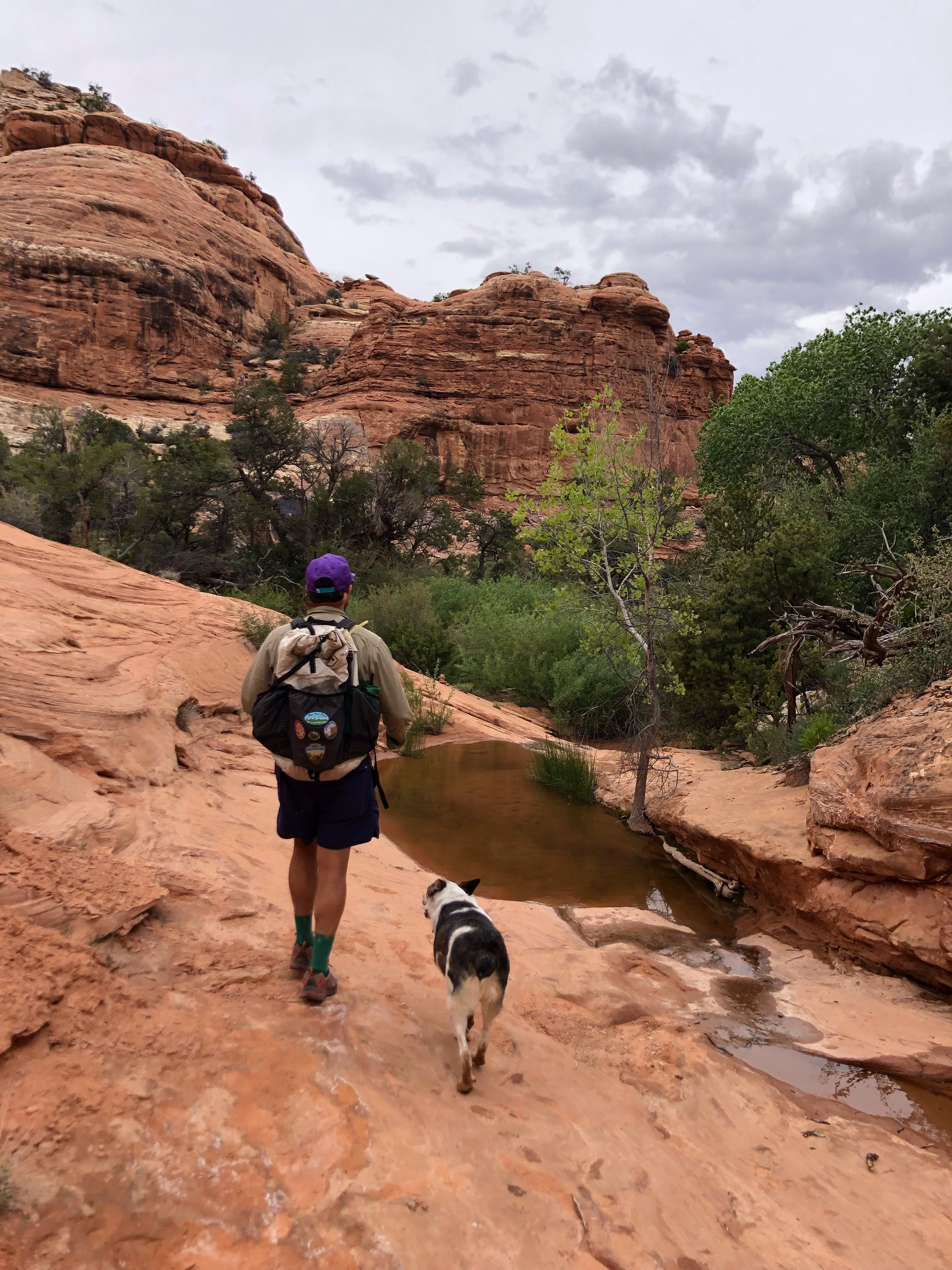 Make sure your dog is prepped and ready to hike, too.  Pic cred: Alexi Kimiatek, Wildland Trekking