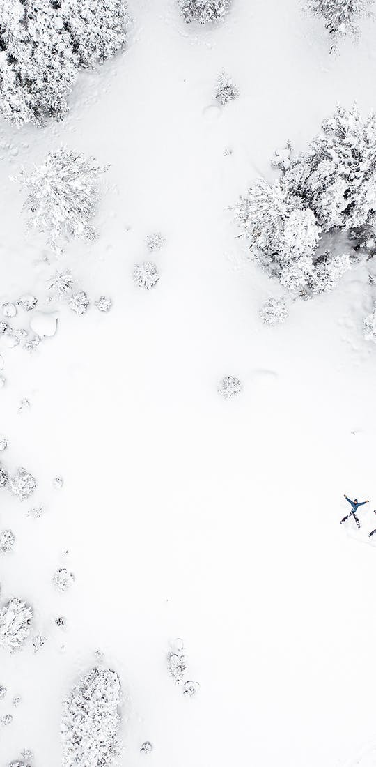 Snow angels in the forest