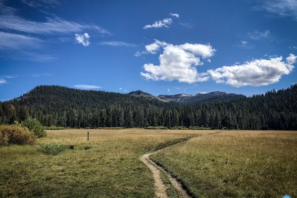 Image courtesy of the Tahoe Rim Trail Association