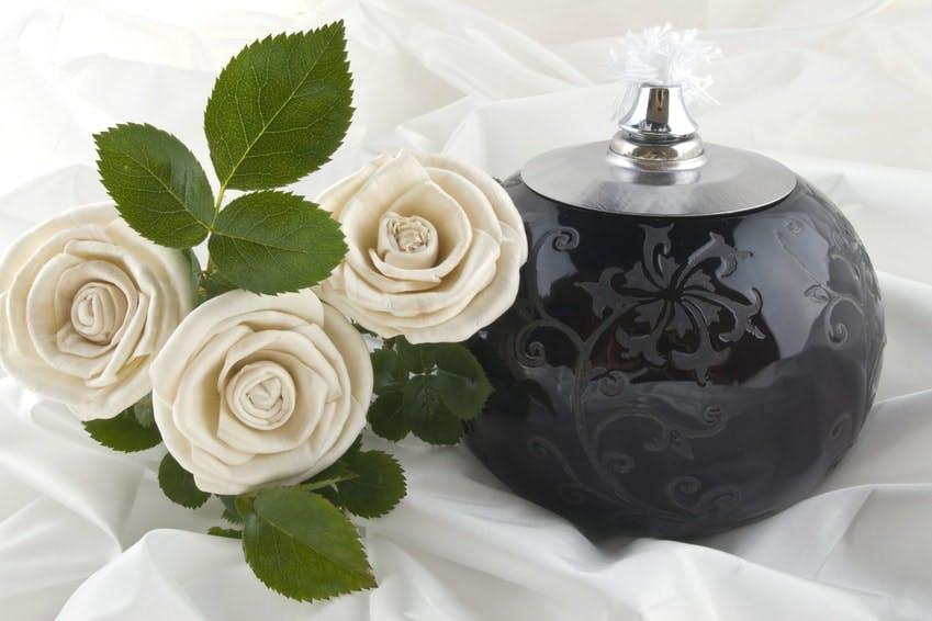 urne et rose blanche