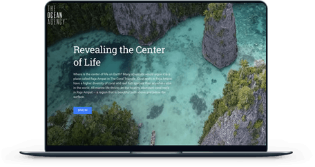 Revealing the Center of Life screen mockup