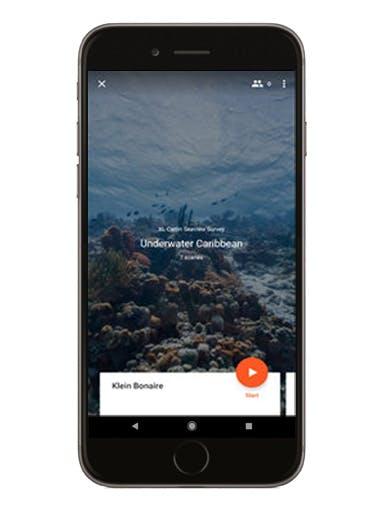 Underwater Caribbean phone screen mockup