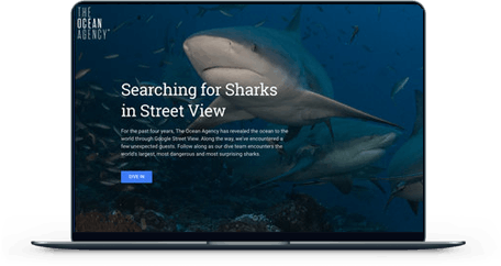 Searching for Sharks in Street View screen mockup