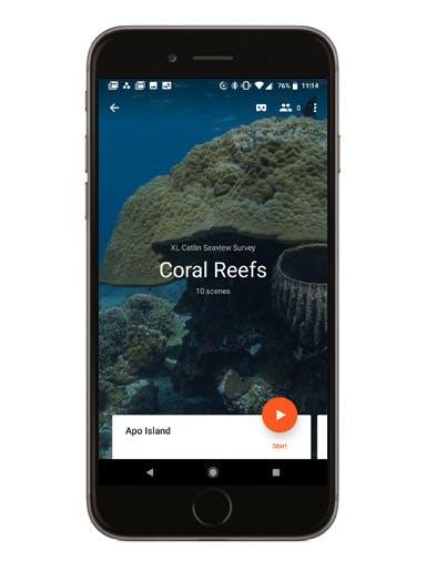 Coral Reefs phone screen mockup