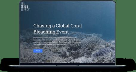 Chasing a Global Coral Bleaching Event screen mockup