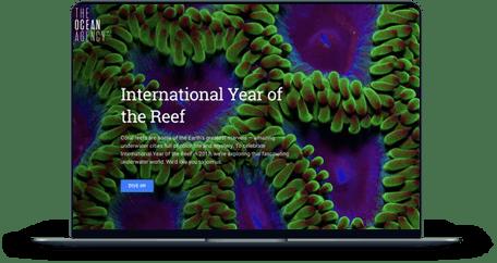 International Year of the Reef screen mockup