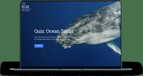 Ocean Safari screen mockup