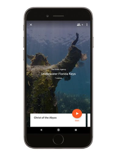Underwater Florida Keys phone screen mockup