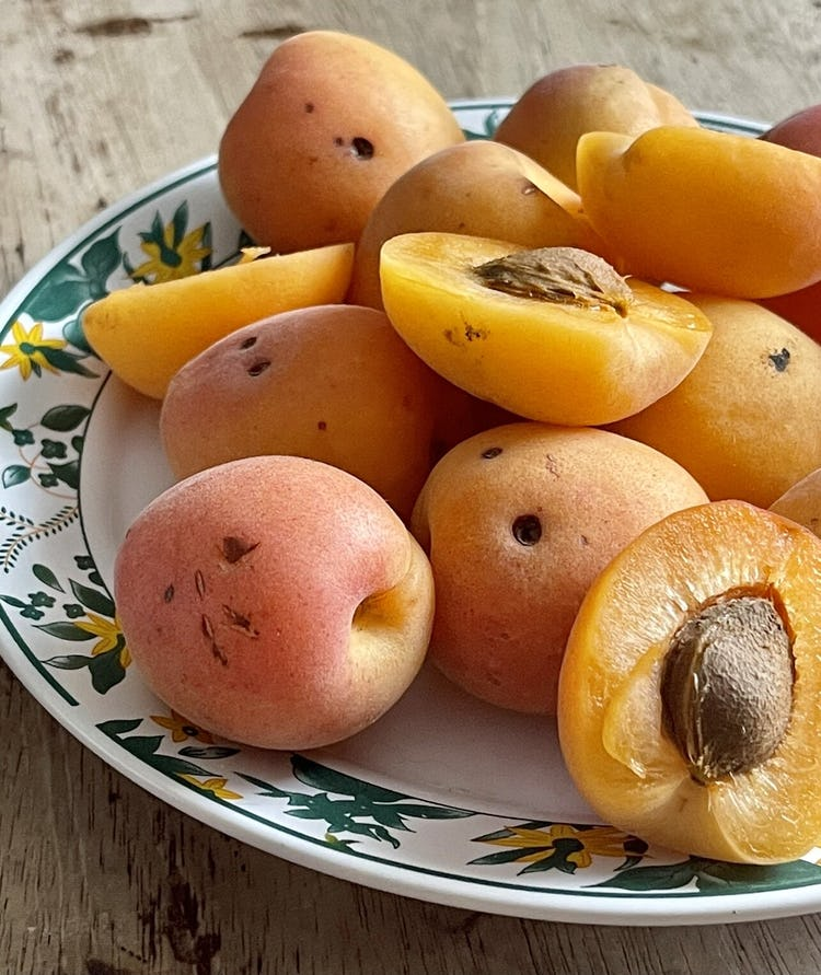 plate with whole and half cut apricots.