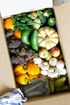 A top down view of the offerings in an Oddbox. This box has: oranges, spring onions, potatoes, courgettes, pumpkins, cucumbers, purple kale, apples, mushrooms, yellow peppers, blackberries, and pears.