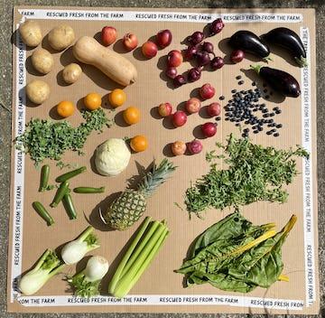 image of vegetables