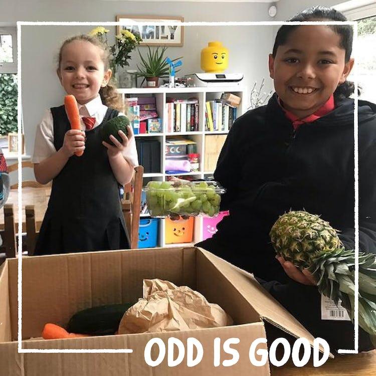 image of odd is good winners