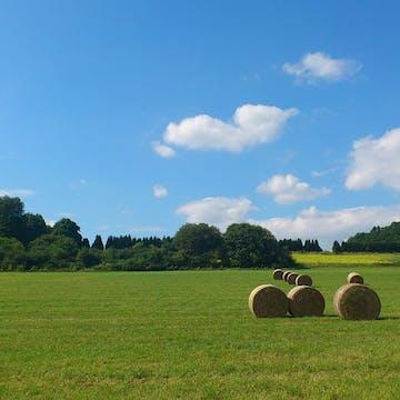 hay bales in Westerwald